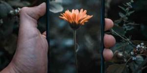 Páginas para hacer fotomontajes gratis: fotoefectos online