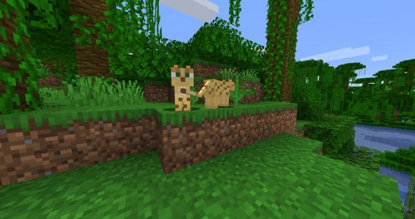 Cómo domesticar a un ocelote en Minecraft