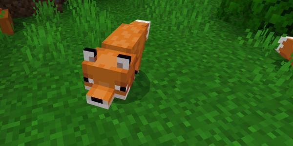 Cómo domesticar a un zorro en Minecraft - Cómo domesticar a un zorro paso a paso
